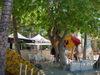 2007_0501hawaii200711067