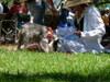 2007_0502hawaii200720051