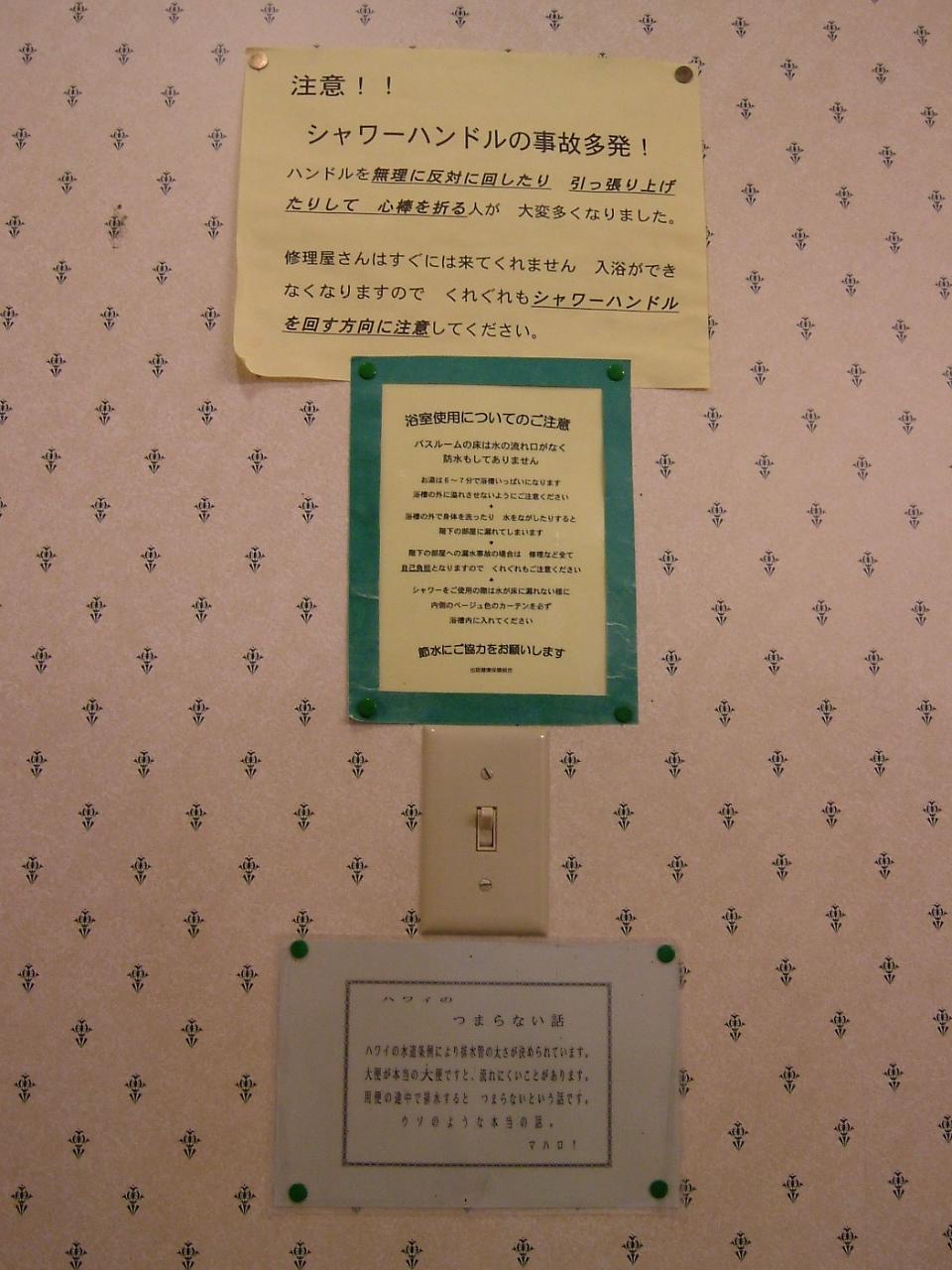 2008_0510hawaii200840195